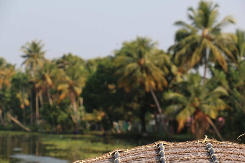 Backwaters_24