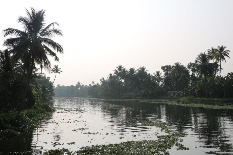 Backwaters_26