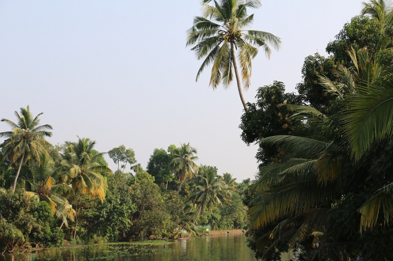 Backwaters_7