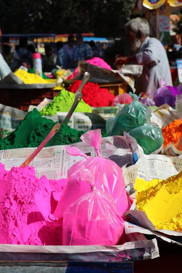 Travel_Update_8_Jaipur_Holi_Festival_thebraidedgirl