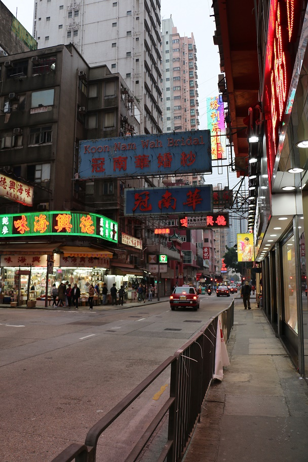 Hong_Kong_Temple_Street_Market_8_thebraidedgirl