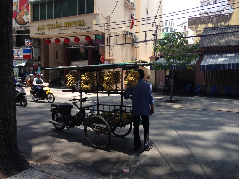 Ho_Chi_Minh_City_thebraidedgirl