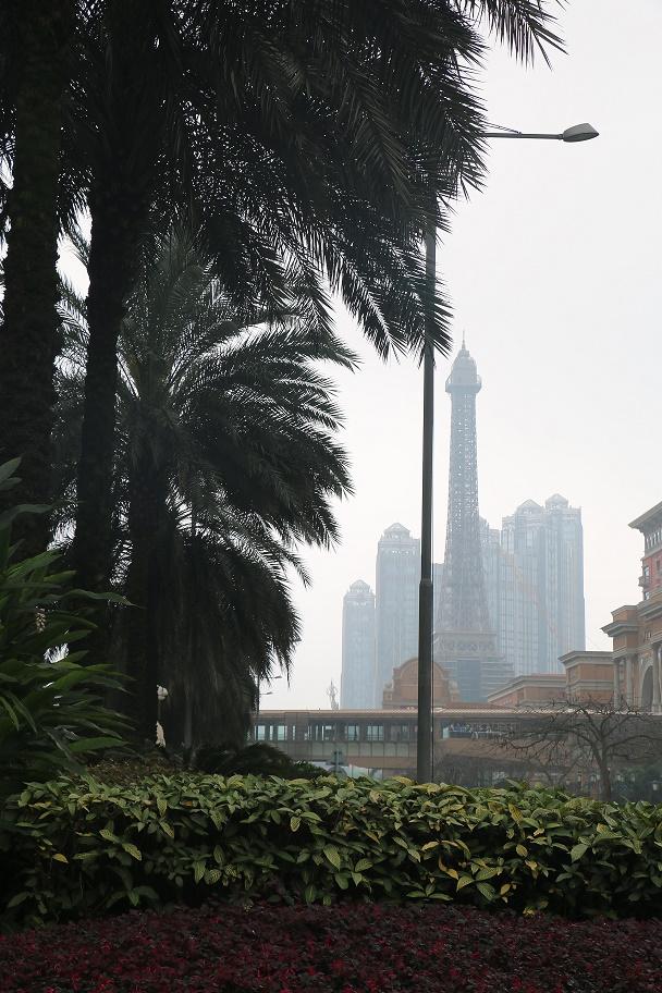 Macau_Taipa_Cotai_Strip_thebraidedgirl