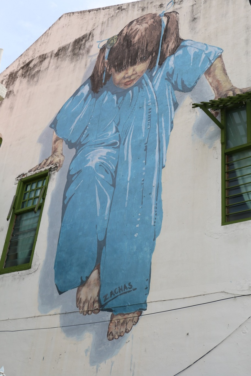 George_Town_Street_Art_7_thebraidedgirl
