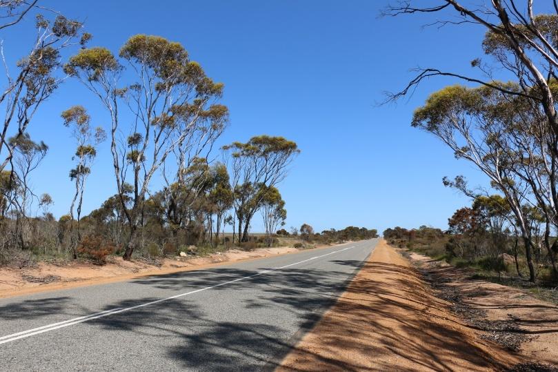 outback-western-australia-thebraidedgirl