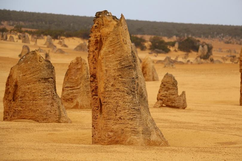 pinnacles-desert-10-thebraidedgirl