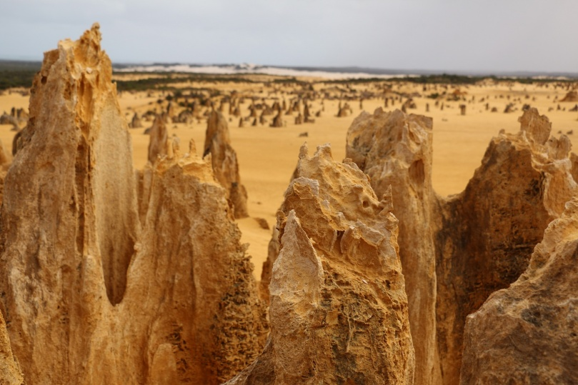 pinnacles-desert-11-thebraidedgirl