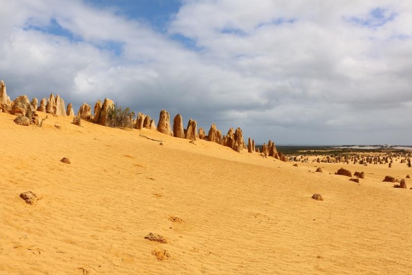 pinnacles-desert-13-thebraidedgirl