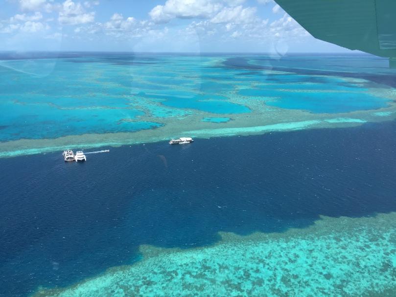 Great Barrier Reef Snorkeling Trip   thebraidedgirl