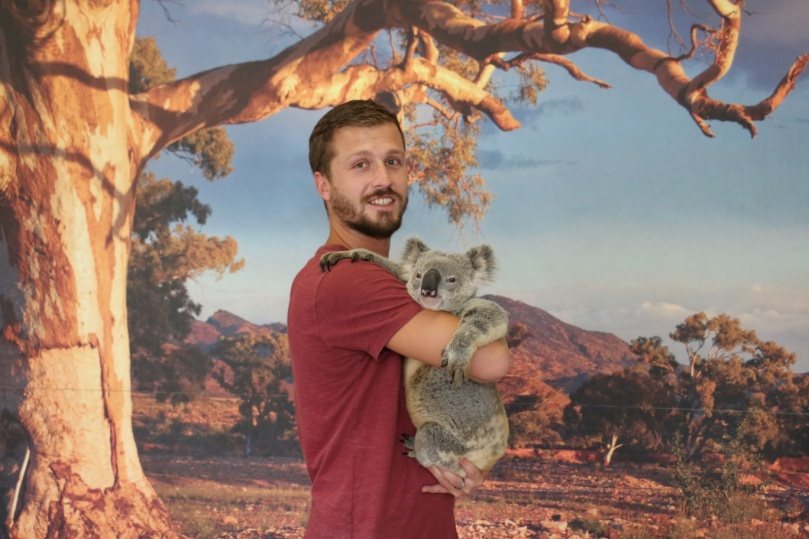 kuranda-koala-gardens-2-thebraidedgirl
